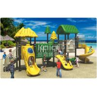 Quality Eco - Friendly Play Gym Outdoor Playground Equipment Anti - Crack 3 Years for sale