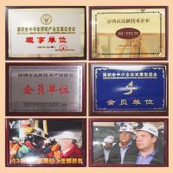 Golden Future Enterprise HK Ltd