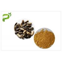 Quality Light Yellow Plant Extract Powder Natural Ingredient Milk Thistle Extraction for sale