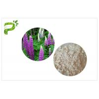 China High Purity Plant Extract Powder CAS 545 47 1 Anti Inflammatory / Bacterial Lupeol wholesale