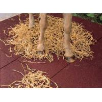 China equine rubber flooring wholesale