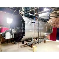 China Stainless Steel Industrial Gas Fired Steam Boilers Dual Fuel Oil Gas Low Noise wholesale