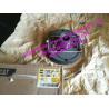 China 1838403 183-8403 Caterpillar PUMP GP-CHARGE 583T.D8R. D8R II. HA871 .TK371 wholesale