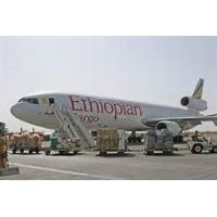 China to Niger shipping A1Chinafreight air cargo  to Niamey,Niger