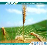 Buy cheap Premium Health Supplements, Zero- added, Instant Oat Powder, Low viscosity, from wholesalers