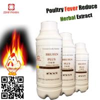 China Natural Remedies Anti Viral Fever For Layer Broiler Chicken Chick Hen wholesale