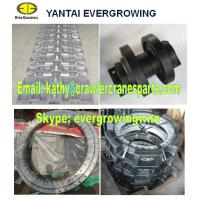 China Undercarriage Parts for FUWA QUY70 Crawler Crane wholesale