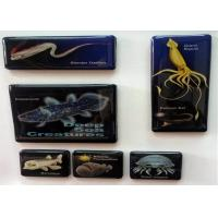 China Small Animal Rubber Magnets Children / Fridge Photo Magnets With Glue Peritoneum wholesale