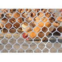 China Wear Resistance Plastic Poultry Netting For Chicken Duck Feeding And Animal Protect on sale