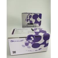 Quality Human Adenylate Cyclase 10, Soluble (ADCY10) ELISA Kit for sale
