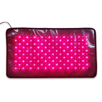 China Middle Size Infrared Red Led Light Therapy Pad wholesale