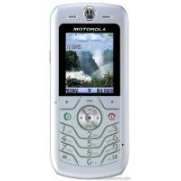 China Motorola L6 on sale