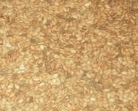 China Yellow Sesame Seeds Supplier