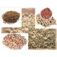 China Sesame seed, Ground nut seed, Coriander Seed, Cumin seed Supplier