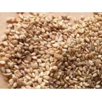 China Brown Sesame Seed Supplier