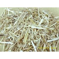 China APMP Wheat Straw Pulping Samples on sale