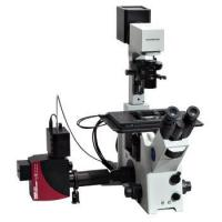 China Confocal Microscopy Systems wholesale