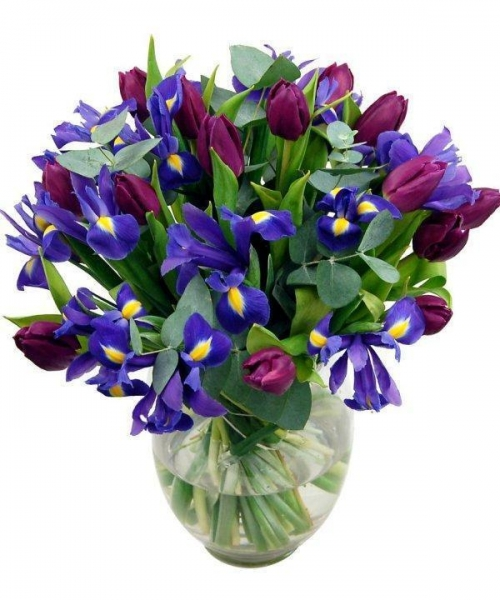 Quality Get Well Flowers Iris & Tulips Bouquet Luxury Spring Flowers 37.95 34.95 Iris & Tulips Bouquet for sale