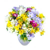 China Get Well Flowers Fantastic Freesias Luxury Mixed Freesias Bouquet 42.95 39.95 Fantastic Freesias wholesale