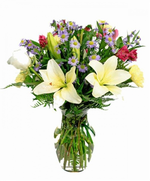 Quality Get Well Flowers Alderney Bouquet Now with 50% Extra FREE! 28.50 23.50 Alderney Bouquet for sale
