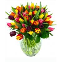 China Get Well Flowers Mixed Tulips Spring Tulip Flowers Bouquet 39.95 34.95 Mixed Tulips wholesale
