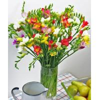 China Get Well Flowers Luxury Freesias Guernsey Freesias 30.00 25.00 Luxury Freesias wholesale