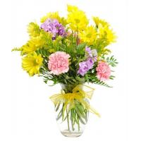 Get Well Flowers Fields of Guernsey Now with 50% Extra FREE! 28.50 22.50 Fields of Guernsey