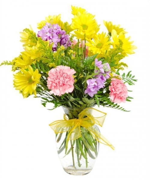 Quality Get Well Flowers Fields of Guernsey Now with 50% Extra FREE! 28.50 22.50 Fields of Guernsey for sale