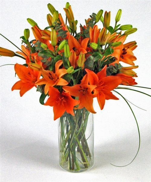 Quality Get Well Flowers Orange Tiger Lilies Flowers By Courier 44.95 39.95 Orange Tiger Lilies for sale