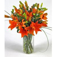 China Get Well Flowers Orange Tiger Lilies Flowers By Courier 44.95 39.95 Orange Tiger Lilies wholesale