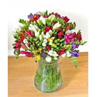 Get Well Flowers Guernsey Freesias Freesias by Post 27.50 25.00 Guernsey Freesias