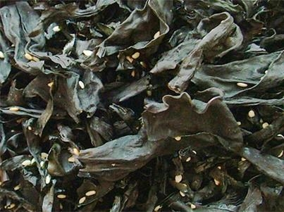 Quality Seasoning ready-to-eat seaweed for sale
