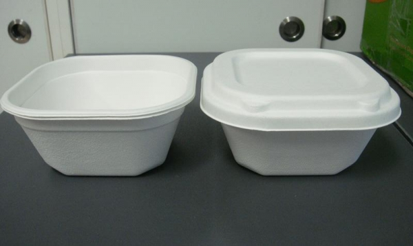 Quality Bowl & Cup Bagasse Bowl-B028 for sale