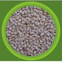 China Natural Sesame Seeds Supplier