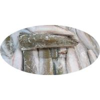 Buy cheap Hake Hubbssi HGT Merlucius Hubbssi from wholesalers