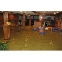 China professional quick and courteous water damage clean up wholesale