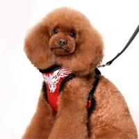 China Designer Dog Leads Cool Chest Harness Vest with Lace Accessories for Puppy wholesale